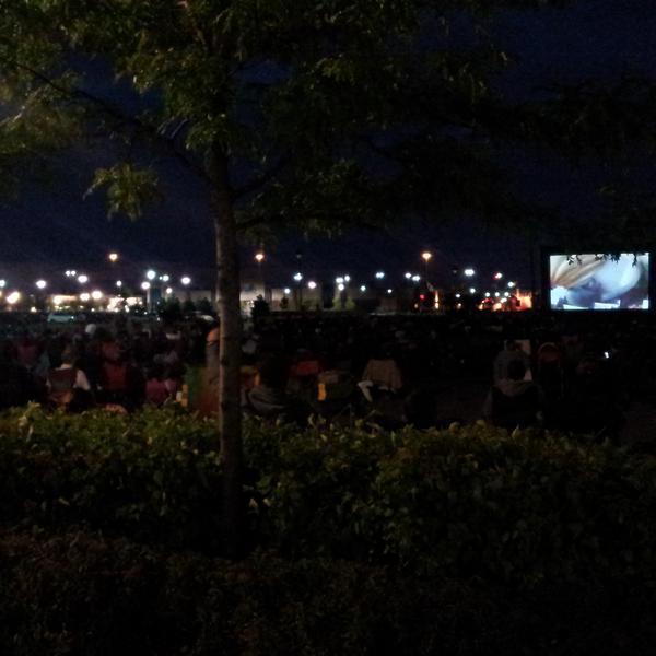 2014- Outdoor movies
